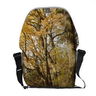 Forrest in the Autumn Messenger Bag