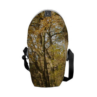 Forrest in the Autumn Courier Bag