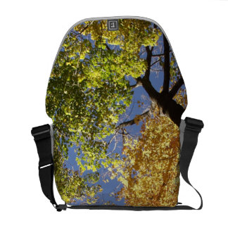 Forrest of Tall Trees Courier Bags