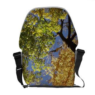 Forrest of Tall Trees Messenger Bag