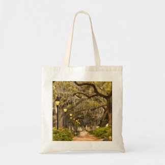 Forsyth Park - Photo, Savannah, Georgia (GA) USA Tote Bag