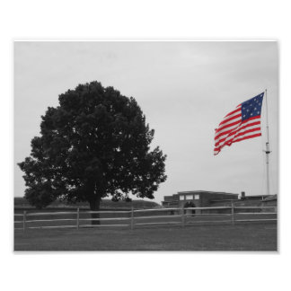 Fort McHenry Photo Art