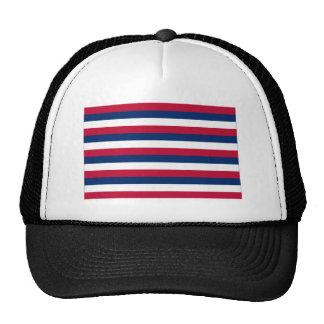 Fort Mifflin Flag Mesh Hat