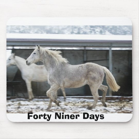 Forty Niner Days Snow Day Mouse Mat