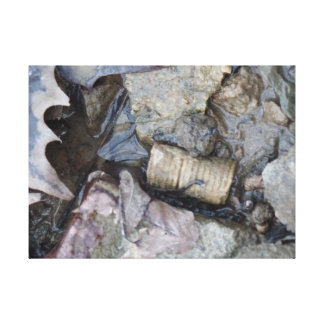 fossil and leaf canvas print