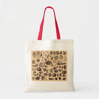 Fossil beach bag