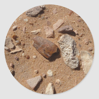 Fossil in the dessert round sticker