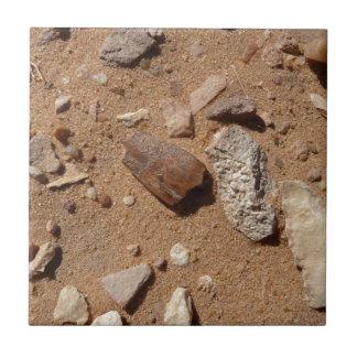 Fossil in the dessert ceramic tile
