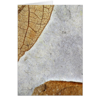Fossil Leaves Greeting Card