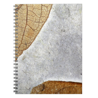 Fossil Leaves Notebooks