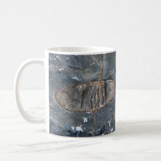 Fossil Mug For Me