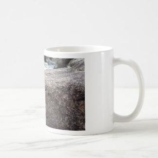 Fossil Rock Basic White Mug