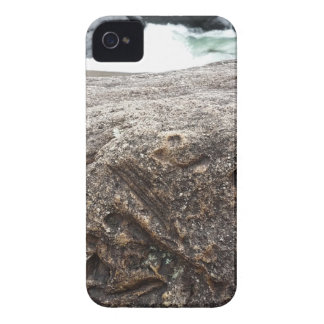 Fossil Rock iPhone 4 Cases