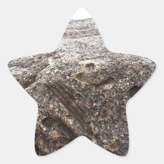 Fossil Rock Star Sticker