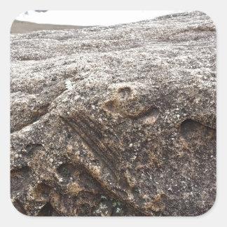 Fossil Rock Square Sticker