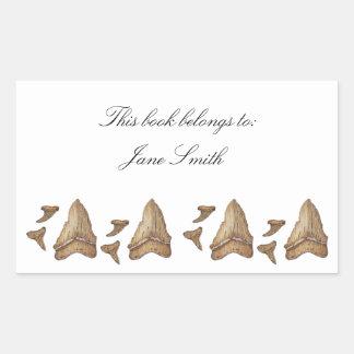 Fossil Shark Teeth Rectangular Sticker