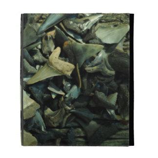 Fossil Shark Tooth Collection iPad Folio iPad Folio Cases