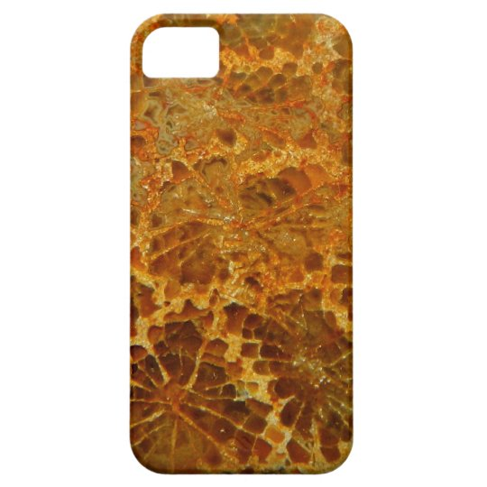 Fossilised coral natural jasper gemstone barely there iPhone 5 case