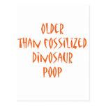 Fossilised Dinosaur Poop