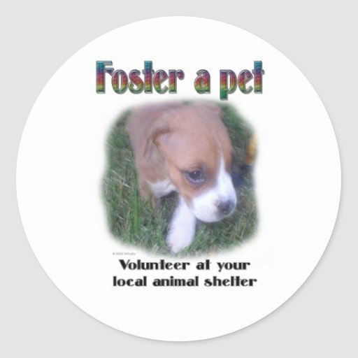 Foster a pet round stickers