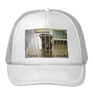 Foster - Rescue - Adopt Hat