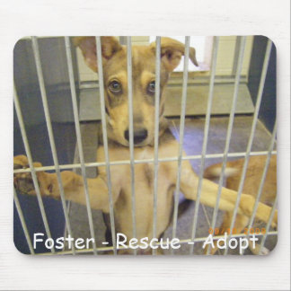 Foster - Rescue - Adopt Mousepad2 Mouse Pad