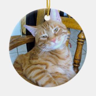 Found Feline Tabby Cat Happy Healthy Spoiled Christmas Ornament