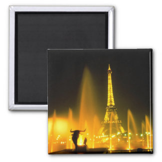 Fountain at the world famous Eiffel Tower Paris Magnet