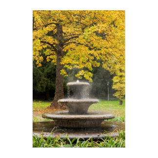 Fountain by a tree in fall, Germany Acrylic Print