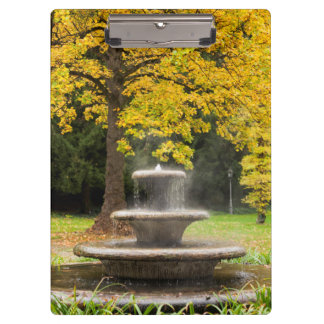 Fountain by a tree in fall, Germany Clipboard