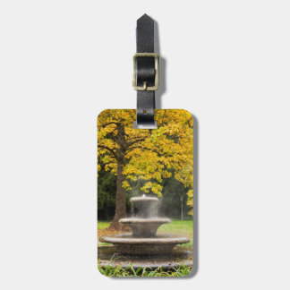 Fountain by a tree in fall, Germany Luggage Tag