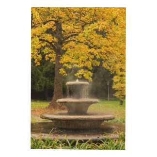 Fountain by a tree in fall, Germany Wood Print