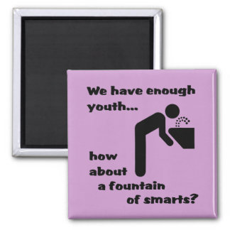 Fountain of Smarts Funny Magnet Humor