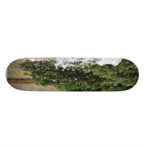 Fountains Water Spout Skate Board Deck