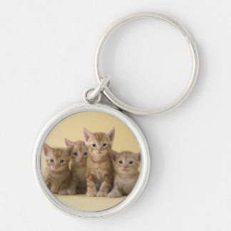 Four American Shorthair Kittens Silver-Colored Round Key Ring