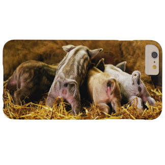 Four Baby Piglet Mangalitsa Hogs Showing Butts Barely There iPhone 6 Plus Case
