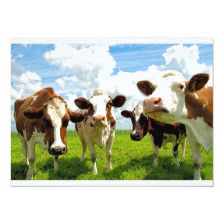Four chatting cows 14 cm x 19 cm invitation card