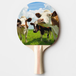 Four chatting cows ping pong paddle