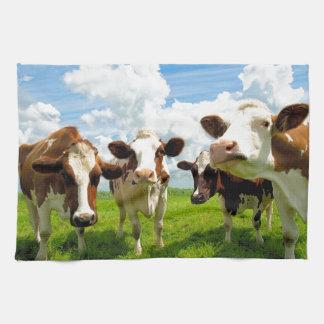 Four chatting cows tea towel