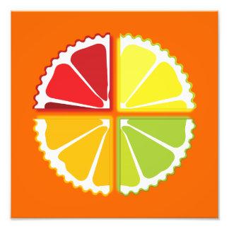 Four citrus fruits art photo