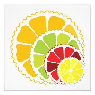Four citrus fruits photo art