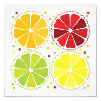 Four citrus fruits photo print