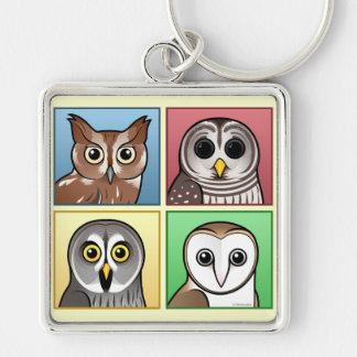 Four Color Owls (pastel) Silver-Colored Square Key Ring
