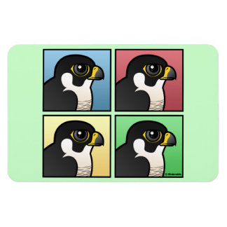 Four Color Peregrine Magnets