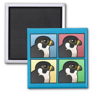 Four Color Peregrine Square Magnet