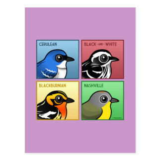Four Color Warblers Postcard