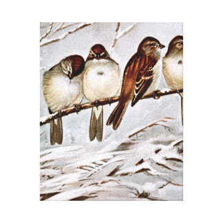 Four Cute Tree Sparrows Stretched Canvas Prints
