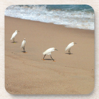 Four Egrets Coaster