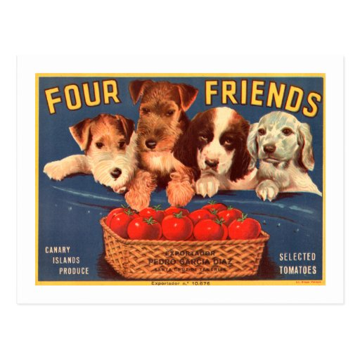 Four Friends Vintage Tomato Crate Label Dogs Postcard