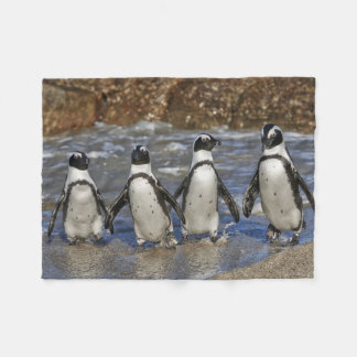 four funny African Penguins, Cape Town Fleece Blanket